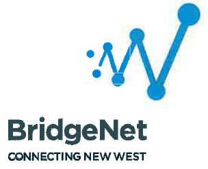 bridgenet